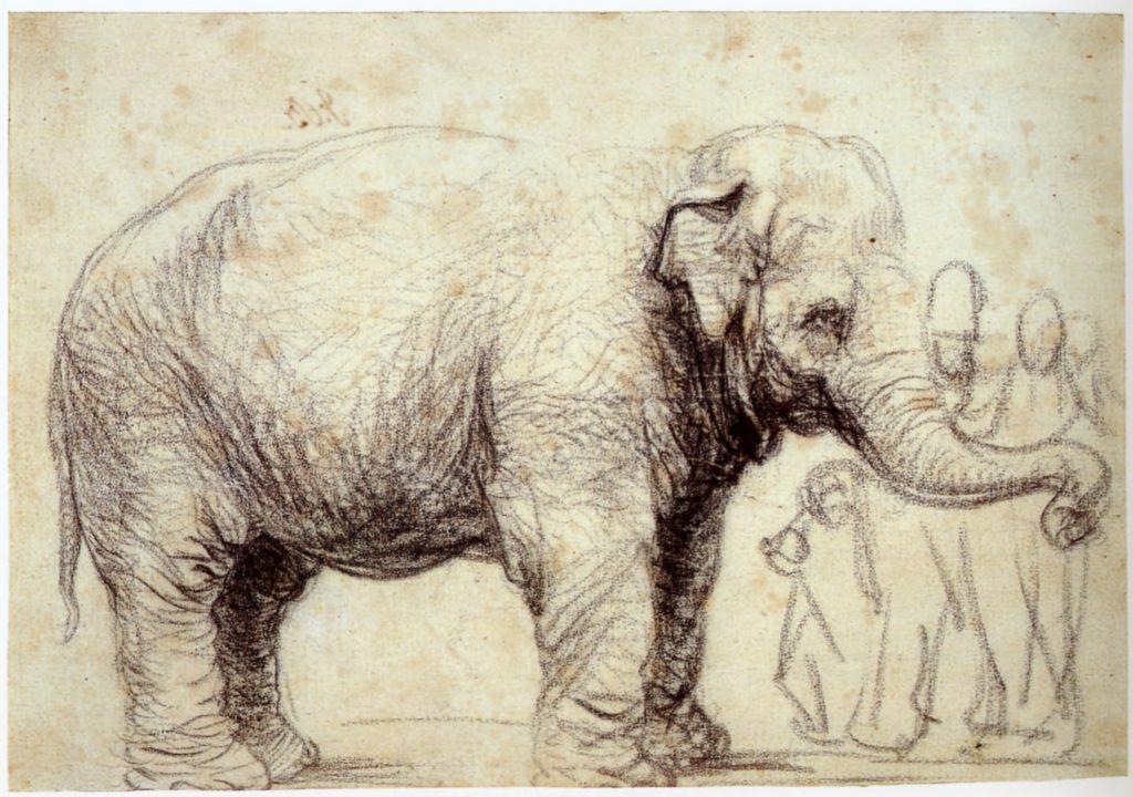 Tekenen als Rembrandt - Special Ulrich Suberg bij OOK