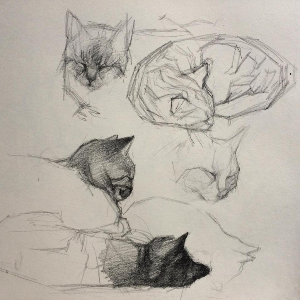 tekening Anna Maria Vargiu, zij geeft les aan Jong Talent bij OOK